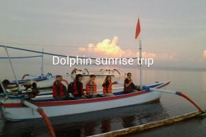 Dolphin Sunrise Trip