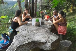 Bali Tour forest traditional