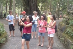 Bali Tour Guide monkey forest