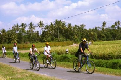 Bali Cycling Kintamani Tour